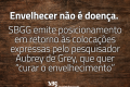 SBGG_posicionamento de Grey