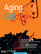 Aging Cell